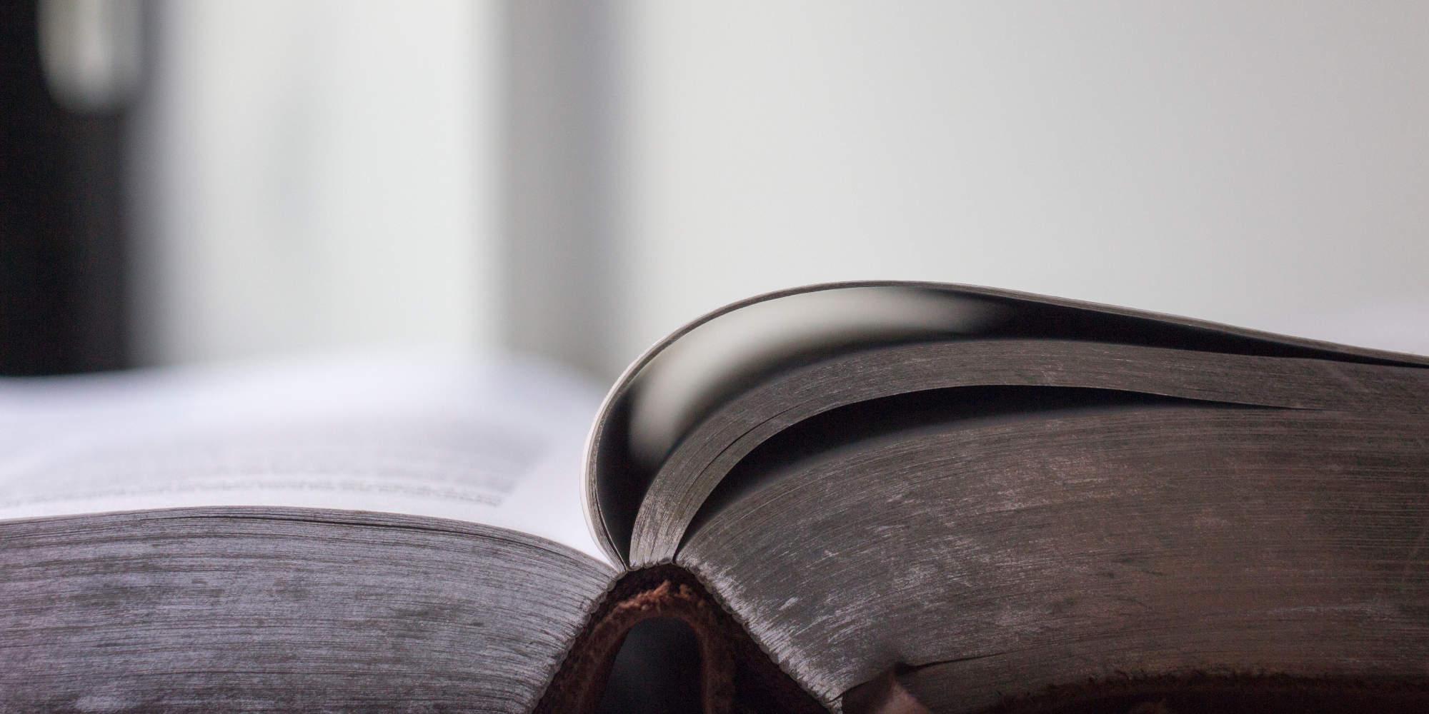 Die Einheit der Bibel neu entdecken